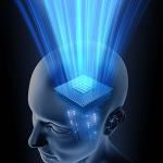 【成功するためのマインドセット】人間の心理を学ぶ【動画解説】