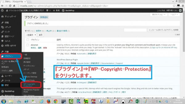 WP-Copyright-Protection06