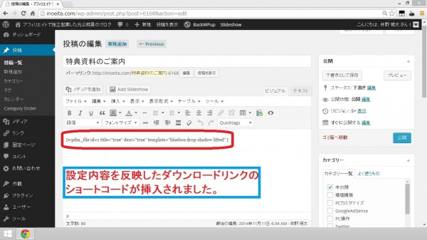 WordPress Download Manager13