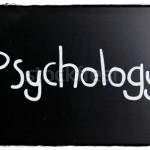 フレーミング効果-人は見方や基準を変えると同じ内容でも全く印象が変わる 【 ビジネス心理学36 】