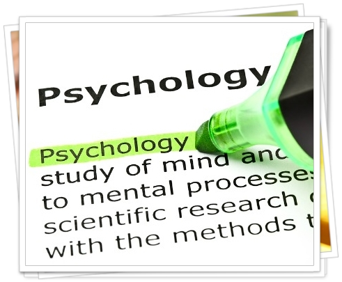 同調現象-人は一定数以上の意見・評価に同調する 【 ビジネス心理学12 ...
